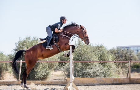 Jumping Seirios Riding Club