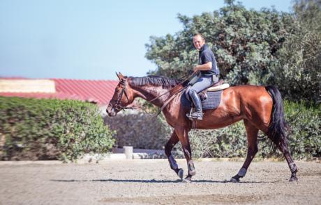 Παύλος Δαρεμάς- Ιππέας-Ιππικός Όμιλος Σείριος