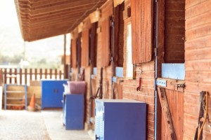 Seirios-Riding-club-stables-1024x683