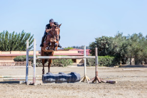 Sport-riding-at-Seirios-Riding-Club