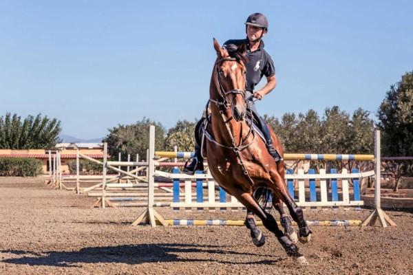 Ιππικός Όμιλος Σείριος - Παύλος Δαρεμάς - Προπόνηση - Σχολή Ιππασίας