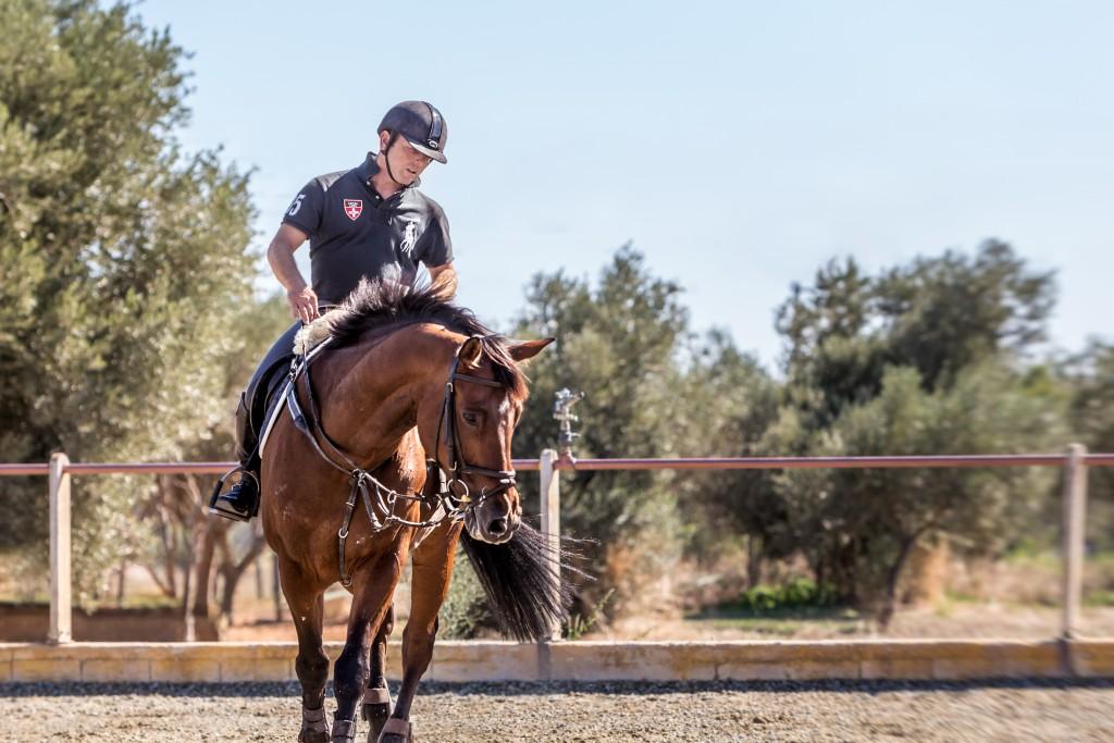 Paulos Daremas - Equestrian Riding School Athens